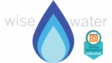 The WiseWater Smart Shower Meter